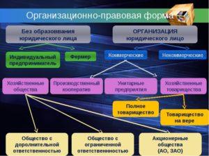 Организационно правовая форма ип как узнать