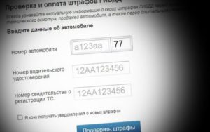 Как проверить если штрафы в гибдд по фамилии калининград