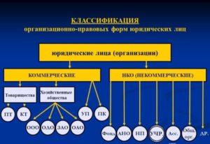 Организационно правовые формы юридических лиц 2018