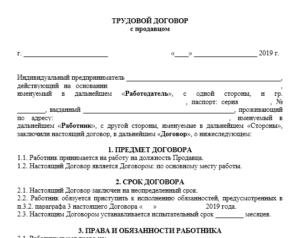 Трудовой договор с продавцом кассиром ип на несколько точек образец