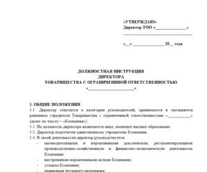 Должностная инструкция начальника корпоративного отдела
