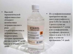 Окситетрациклина гидрохлорид для птиц как разводить в воде