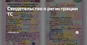 Как узнать дату выдачи свидетельства о регистрации тс по номеру
