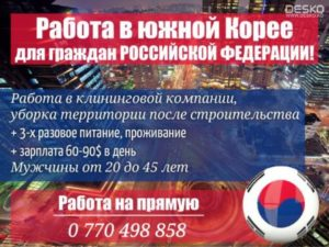 Работа в корее для граждан киргизии 2019 вакасия