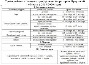 Сроки зимней охоты 2019 2019 в чувашии