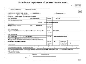 Госпошлина в суд статус плательщика 01 или 08