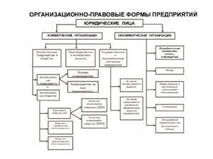 Организационно правовых форм на 2019 год