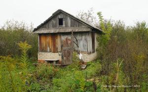 Как оформить брошенный садовый участок в собственность