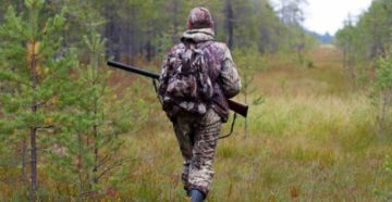 Сроки открытия охоты на зайца в башкортостане