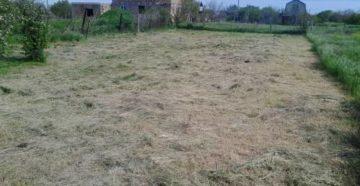 Как приватизировать земельный участок в крыму