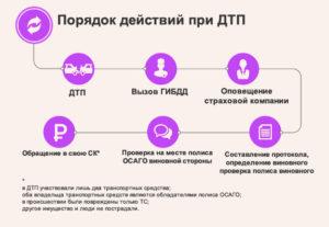 Порядок действий при дтп 2019
