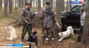 Какие дни можно охотиться на зайца в ростовской области 2018